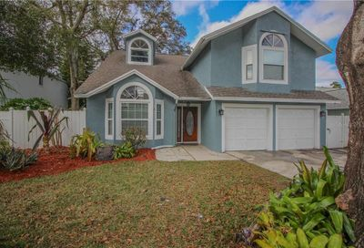 3031 Pine Forest Drive Palm Harbor FL 34684