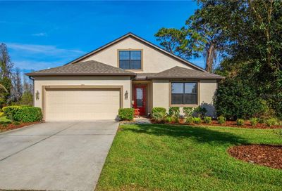 8539 May Port Court Land O Lakes FL 34638