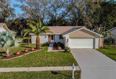 1643 E Dorchester Court Palm Harbor FL 34684