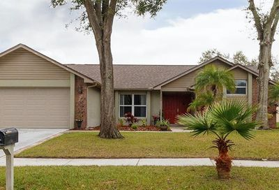 1209 Carrie Wood Drive Valrico FL 33596