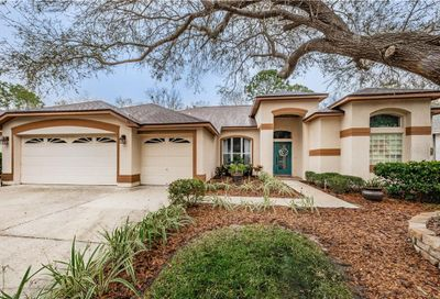 3857 Siena Lane Palm Harbor FL 34685