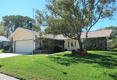 3120 Brunswick Circle Palm Harbor FL 34684