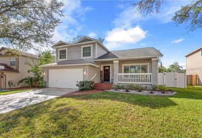 2988 Shannon Circle Palm Harbor FL 34684