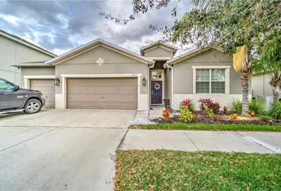 12129 Streambed Drive Riverview FL 33579