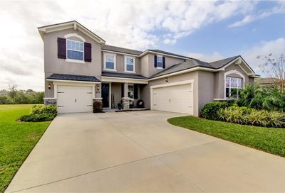 12315 Bay Estuary Bend Riverview FL 33579