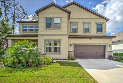 11849 Cross Vine Drive Riverview FL 33579