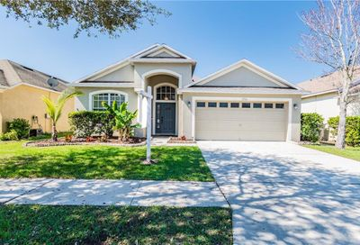 8714 Sandy Plains Drive Riverview FL 33578