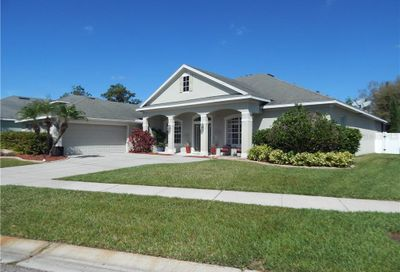 11748 Newberry Grove Loop Riverview FL 33579