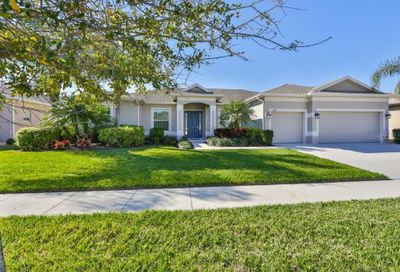 3809 Gaviota Drive Sun City Center FL 33573
