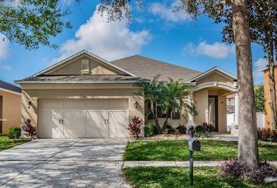 11246 Running Pine Drive Riverview FL 33569