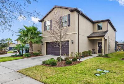8306 Red Spruce Avenue Riverview FL 33578