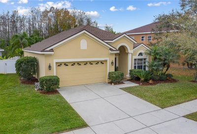 13549 Hawk Lake Drive Orlando FL 32837