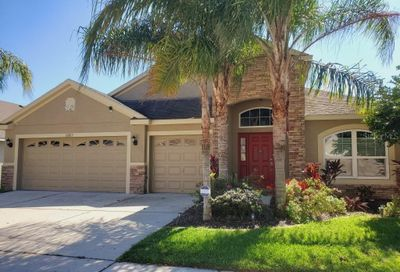 10815 Rockledge View Drive Riverview FL 33579