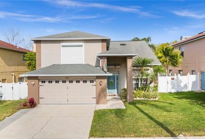 11403 Whispering Hollow Drive Tampa FL 33635