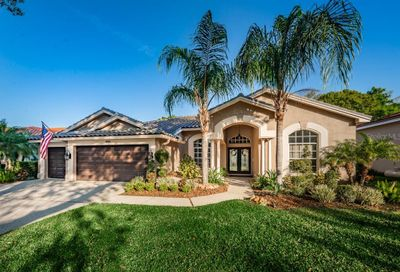 4811 Cross Pointe Drive Oldsmar FL 34677