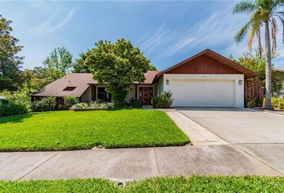 551 Fernshire Drive Palm Harbor FL 34683