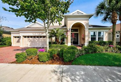 5812 Watercolor Drive Lithia FL 33547