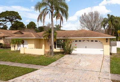 107 Chestnut Circle Safety Harbor FL 34695