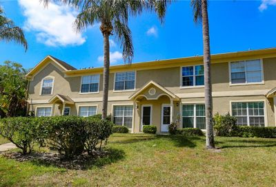2861 Thaxton Drive Palm Harbor FL 34684