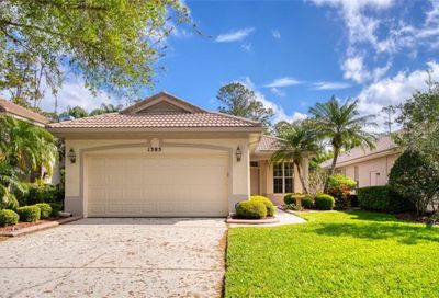 1385 River Oaks Court Oldsmar FL 34677