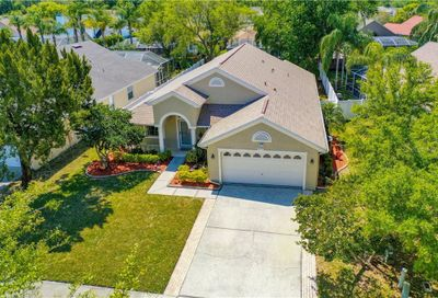4784 Ridgemoor Circle Palm Harbor FL 34685