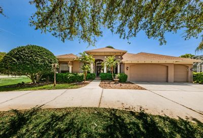 1105 Riverside Ridge Road Tarpon Springs FL 34688