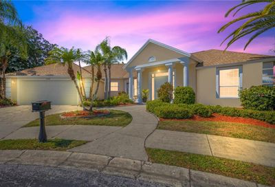 2208 Hampstead Court Safety Harbor FL 34695