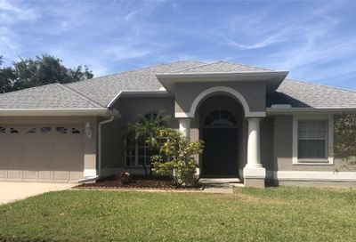 1229 Salt Lake Drive Tarpon Springs FL 34689
