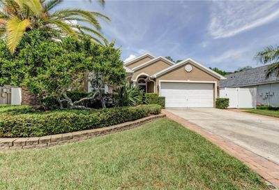 350 Fountainview Circle Oldsmar FL 34677