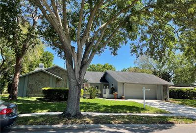 410 Holly Hill Road Oldsmar FL 34677