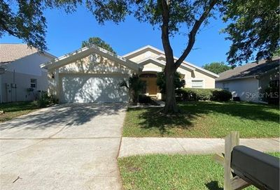 1905 Bell Ranch Street Brandon FL 33511