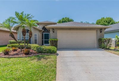2013 Thornbush Place Brandon FL 33511