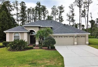2933 Big Cypress Way Wesley Chapel FL 33544