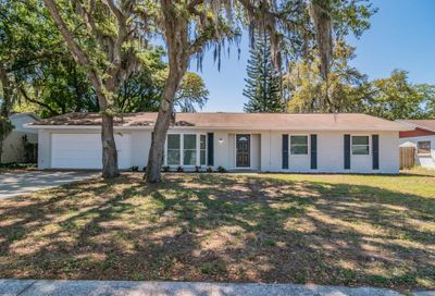 309 E Windhorst Road Brandon FL 33510