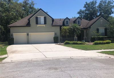 15235 Merlinglen Place Lithia FL 33547