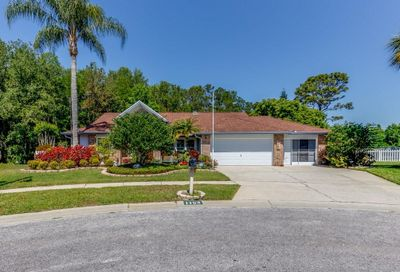 1153 Farmingdale Lane New Port Richey FL 34655