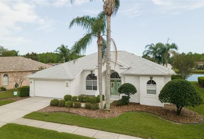 1460 Haverhill Drive New Port Richey FL 34655