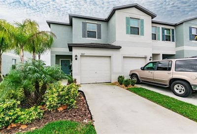7627 Ginger Lily Court Tampa FL 33619
