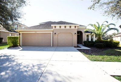 15651 Starling Water Drive Lithia FL 33547