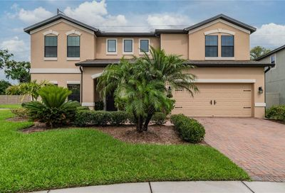 718 Wellington Court Oldsmar FL 34677