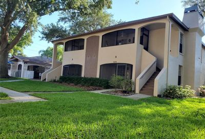 3008 Bonaventure Circle Palm Harbor FL 34684