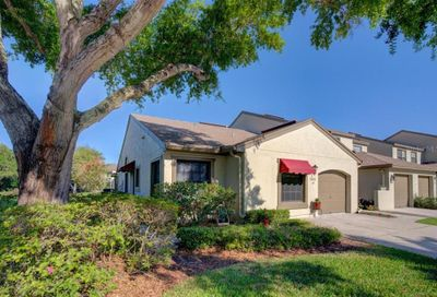 1203 Hounds Run Safety Harbor FL 34695