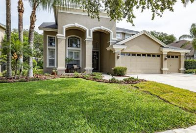 3009 Naughton Way Tarpon Springs FL 34688