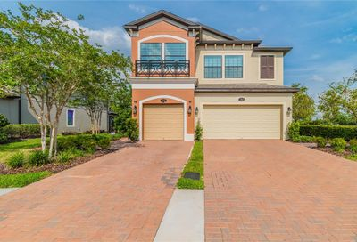1656 Nature View Drive Lutz FL 33558