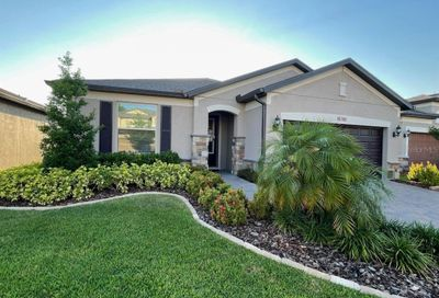 18780 Birchwood Groves Drive Lutz FL 33558