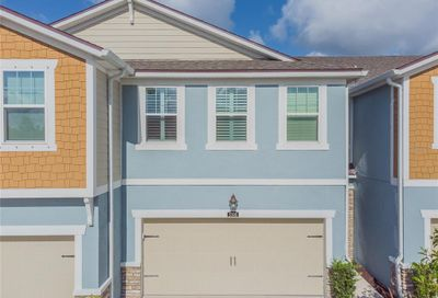17806 Althea Blue Place Lutz FL 33558