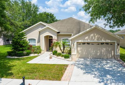 11806 Summer Springs Drive Riverview FL 33579
