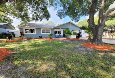 135 Coral Drive Safety Harbor FL 34695