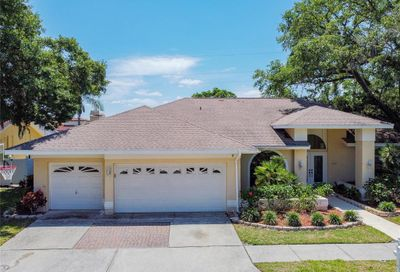 3021 Crest Drive Clearwater FL 33759