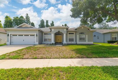 1424 Clearglades Drive Wesley Chapel FL 33543